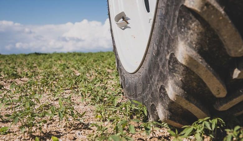 cómo evitar la compactación del suelo